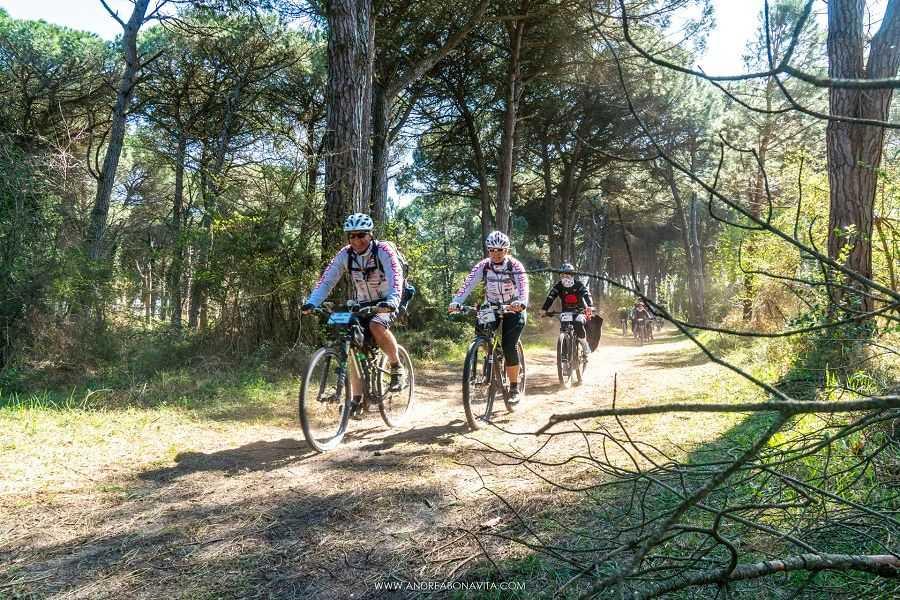 Cervia Turismo Da Cervia alla Basilica di S. Apollinare in Classe di Ravenna in bicicletta