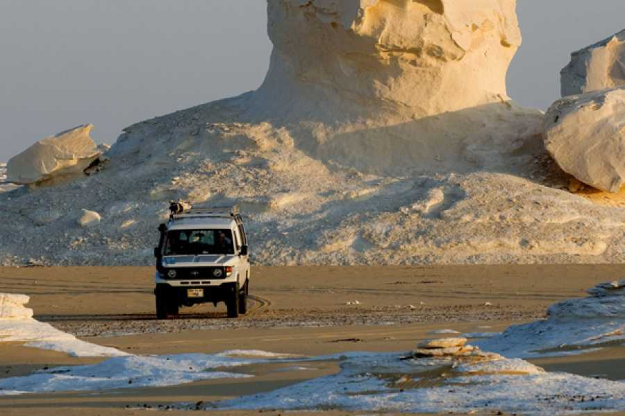 El Gouna Tours One Night Camping in white and Black desert From Cairo
