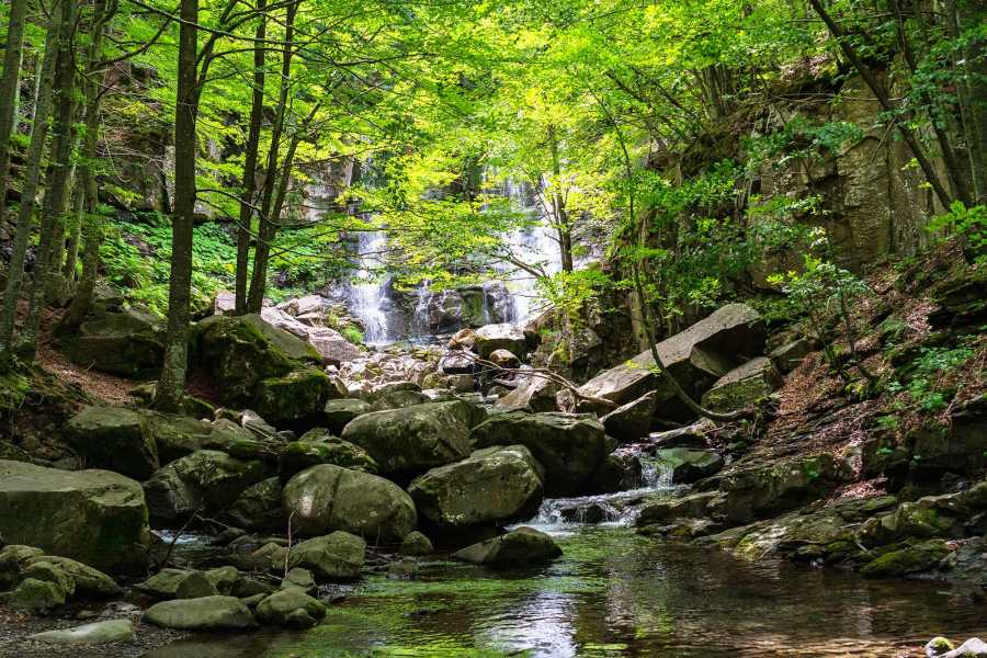 Bologna Welcome La cascata del Dardagna e il Santuario della Madonna dell'Acero: un suggestivo cammino sospeso tra religiosità popolare e natura incontaminata
