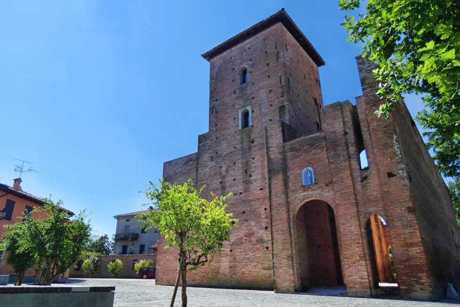 Bologna Welcome Visita alla perla della pianura bolognese il cui centro storico è un vero scrigno di tesori: opere straordinarie del Guercino, di Guido Reni e di Lavinia Fontana