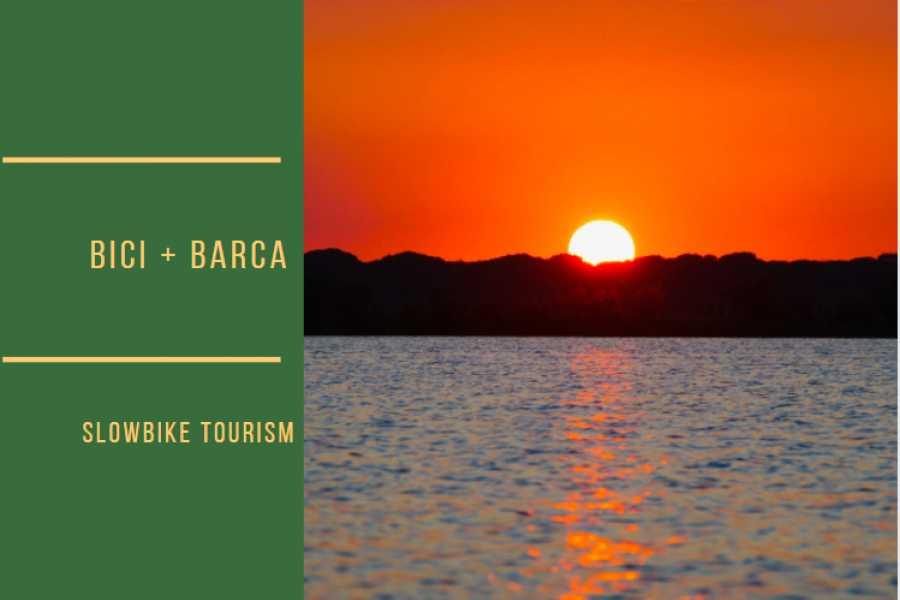 Ravenna Incoming Convention & Visitors Bureau Tramonto in Pialassa coi fenicotteri (bici+barca)