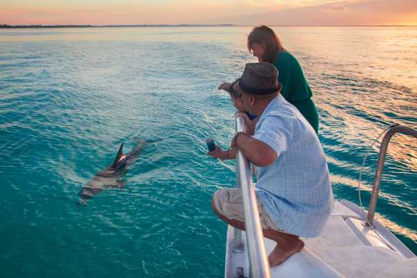 3 hour Glow Worm Sunset Cruise from Providenciales
