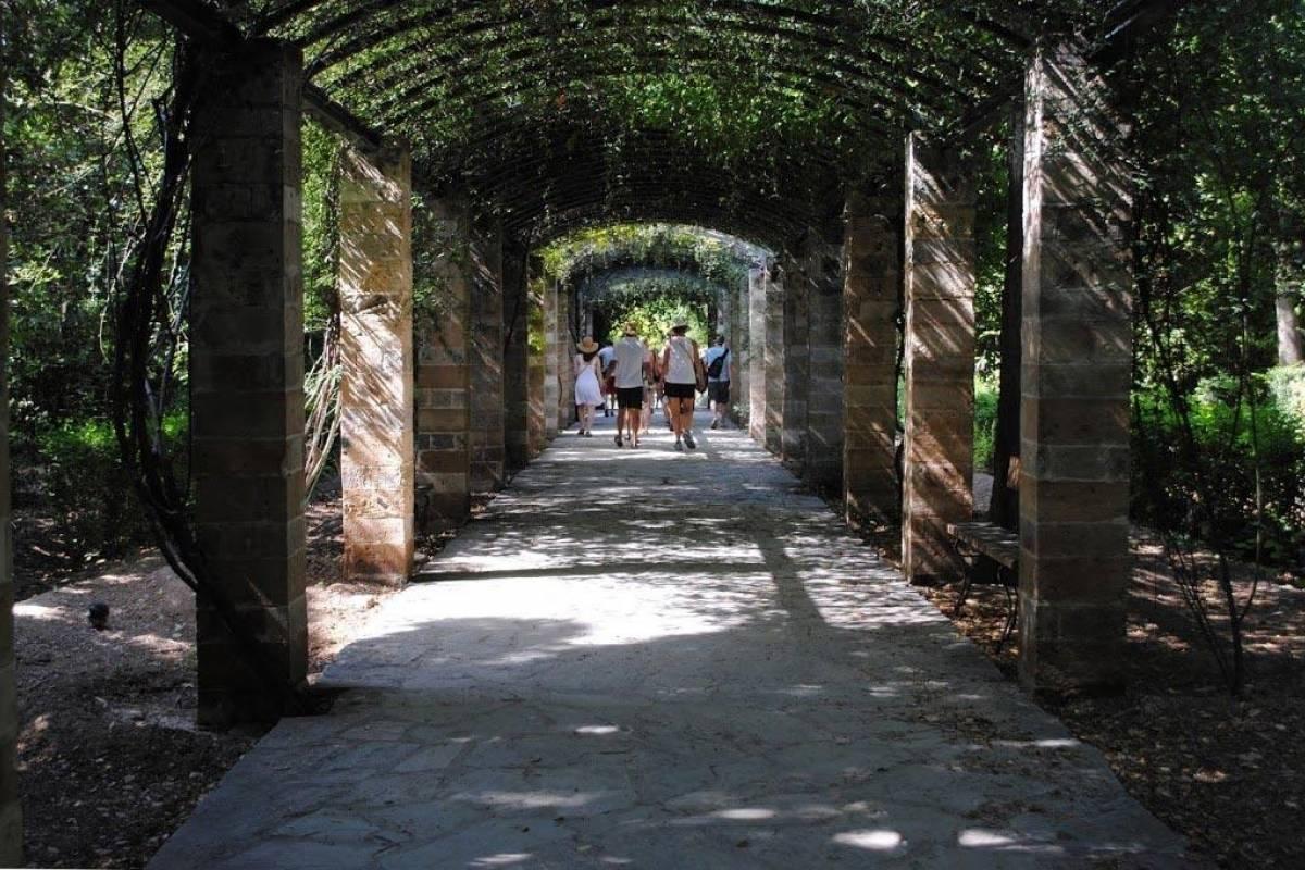 Visit Meteora Acropolis, Athens City Tour and Acropolis Museum Tour