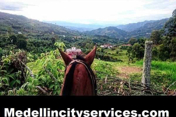 Horseback Riding Adventure from Medellin