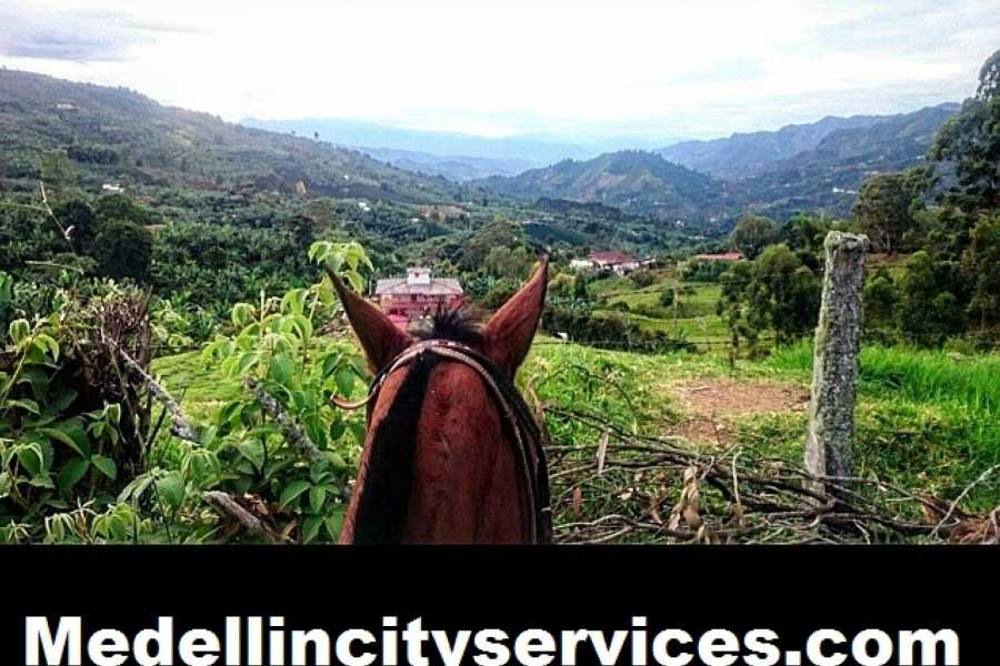 Medellin City Tours Private Horse Ride