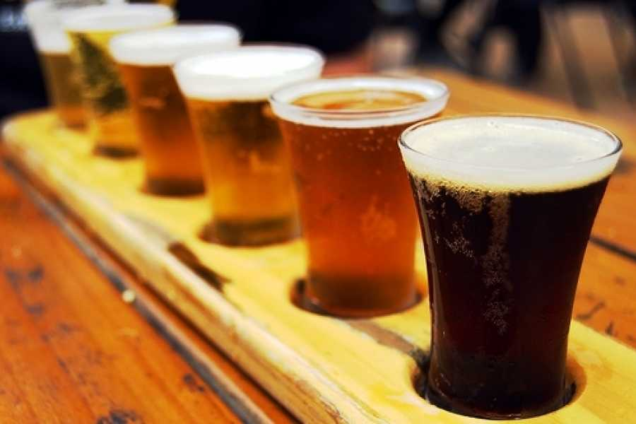 Brewer's Berlin Tours Craft Beer & Breweries Tour
