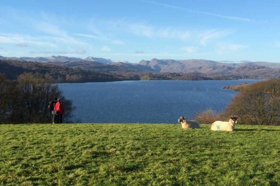 Lake District Tours TOUR A - ピーターラビットの故郷とウィンダミア湖クルーズ半日観光