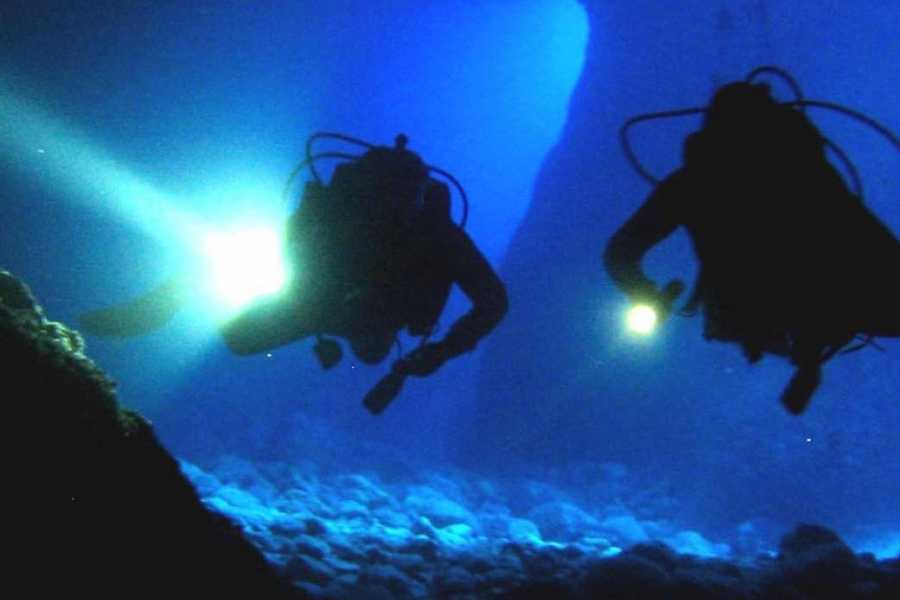 Aqua Mania Adventures SCUBA: NIGHT DIVE