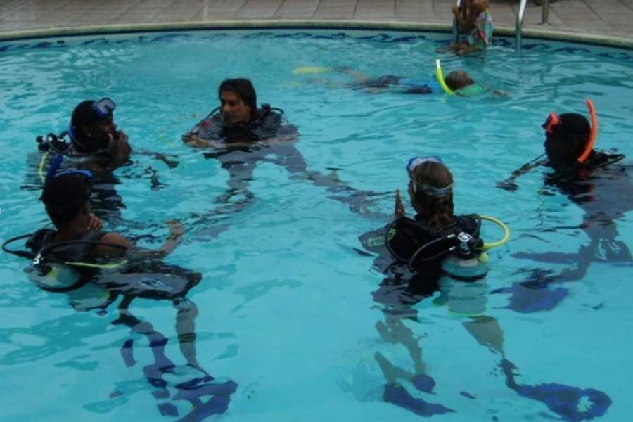 Aqua Mania Adventures SCUBA: PADI DIVER COURSE