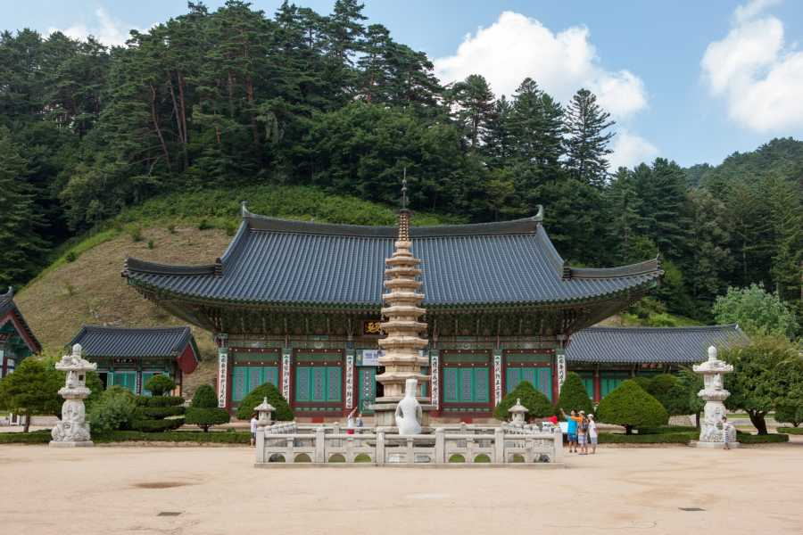 Kim's Travel KD 36 Buddhist Temple Stay Tour (2D1N)