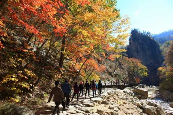 Kim's Travel 38 韩国雪岳山2天1夜游