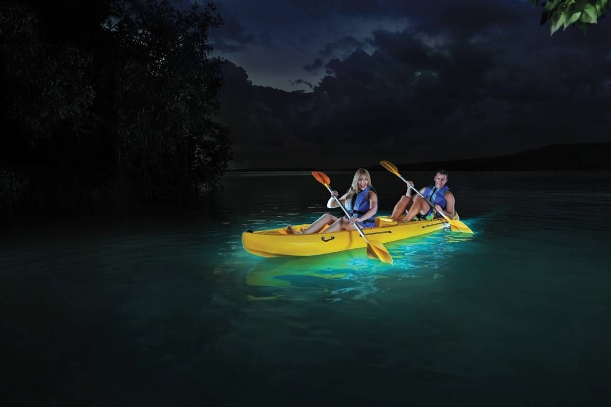 Blue Waters Caribbean Adventures Private Biobay Tour