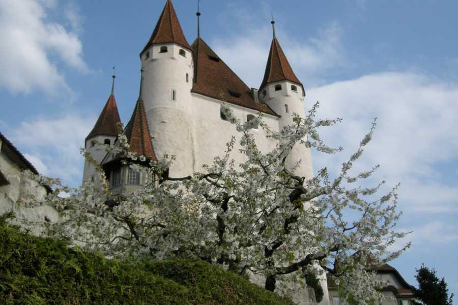 Interlaken Tourismus Schlossführung