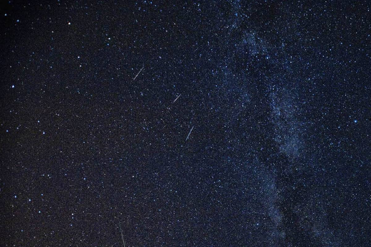 Sugaman Tours The Night of Shooting Stars