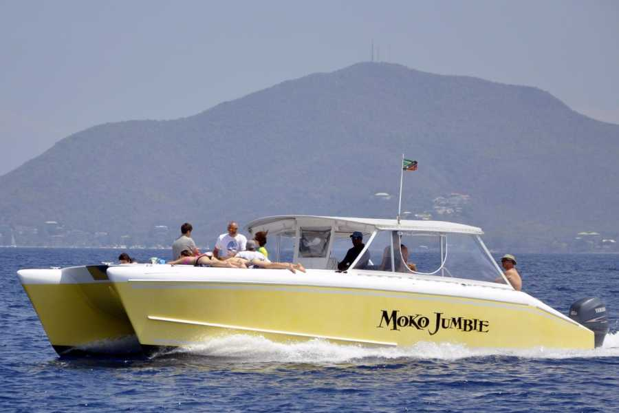 Blue Water Safaris Private Power Catamaran  5 Hour Experience