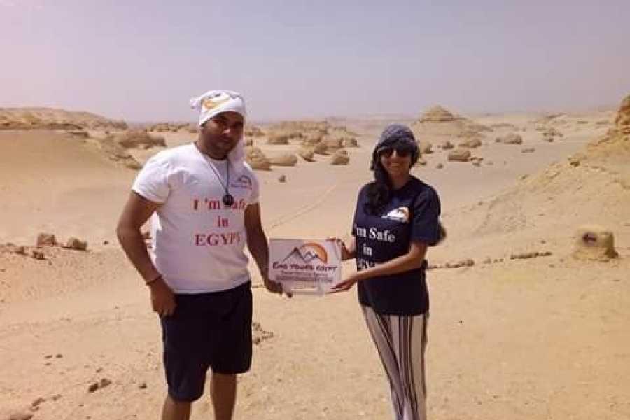 EMO TOURS EGYPT 游览鲸鱼谷和旱谷EL RAYAN瀑布在从开罗的EL EL法尤姆