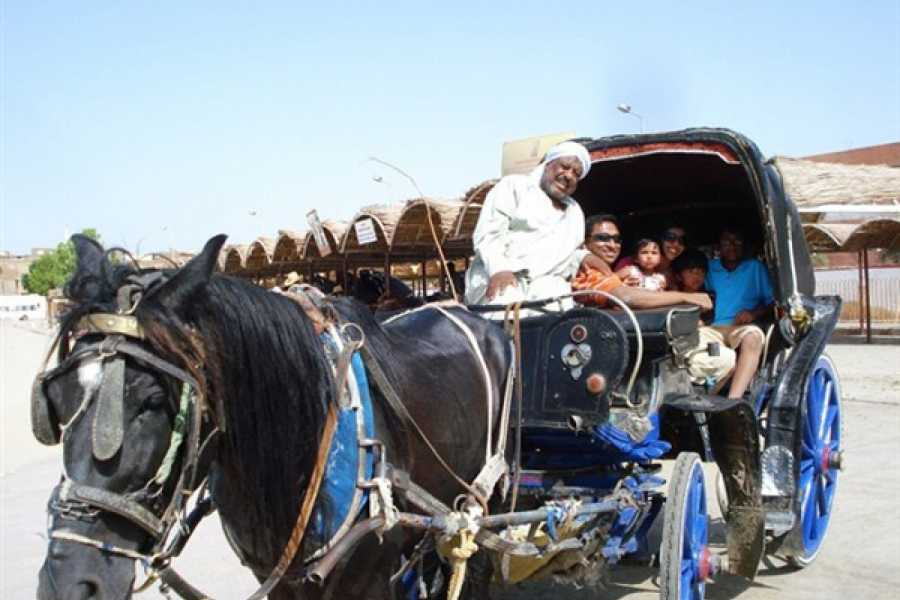 EMO TOURS EGYPT TURISMO ASWAN CITY NO TRANSPORTE DO CAVALO