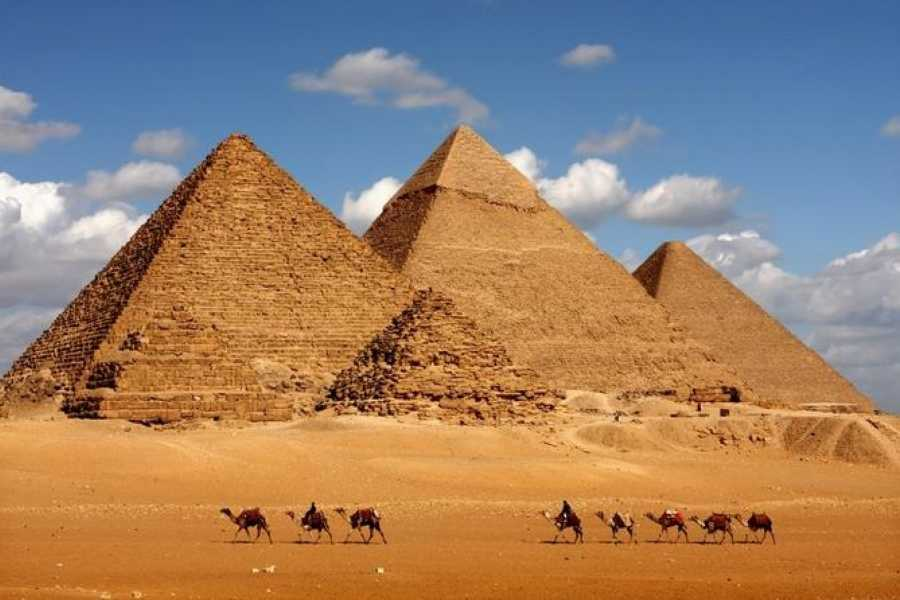 EMO TOURS EGYPT Day Tour to Cairo from Alexandria
