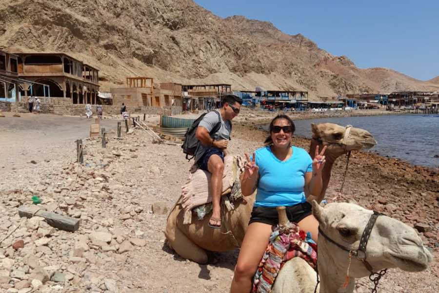 EMO TOURS EGYPT Snorkel & Camel Ride, Quad Bike Full Day In Dahab From Sharm El Sheikh