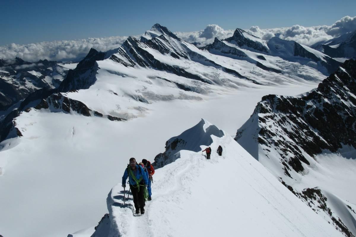 Swiss Alpine Guides Mönch 4107m
