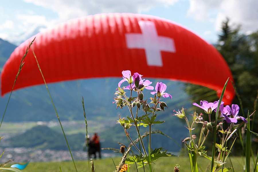 tandem-flights Paragliding Niesen