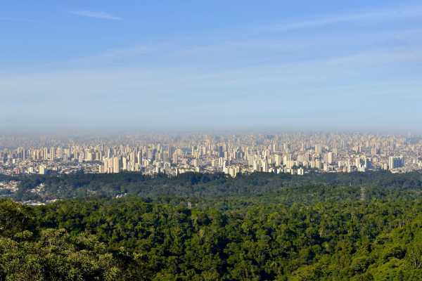 Around SP ECO TOUR EN SAO PAULO (4 HRS)