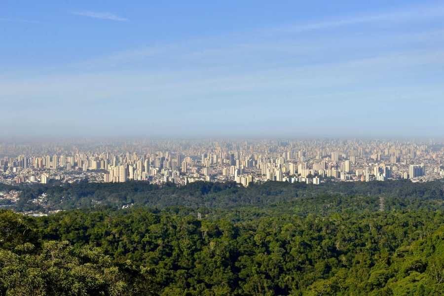 Around SP ECO TOUR SAO PAULO (4 hrs)