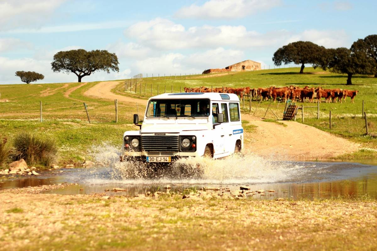 Emotion - life on adventure 4x4 Tour - Descoberta da Herdade