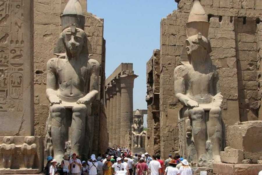 EMO TOURS EGYPT カイロとルクソールを訪れる1泊2日のサファガ港からのツアー