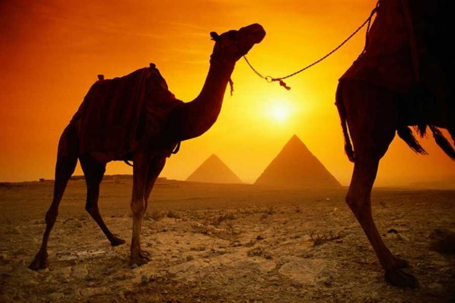 EMO TOURS EGYPT Egypt Holiday Package for 12 days 11 Nights