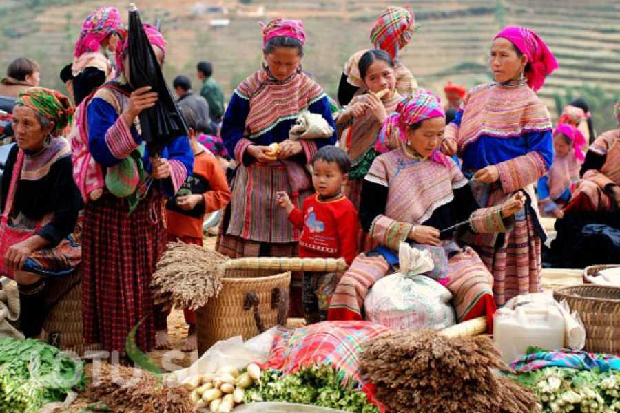 Vietnam 24h Tour Sapa Trekking - Ethnic Market 3 days