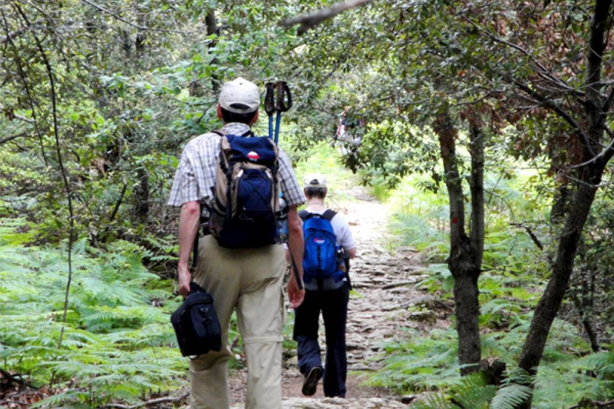 Les Hirondelles Ltd Walking and hiking with many tastes