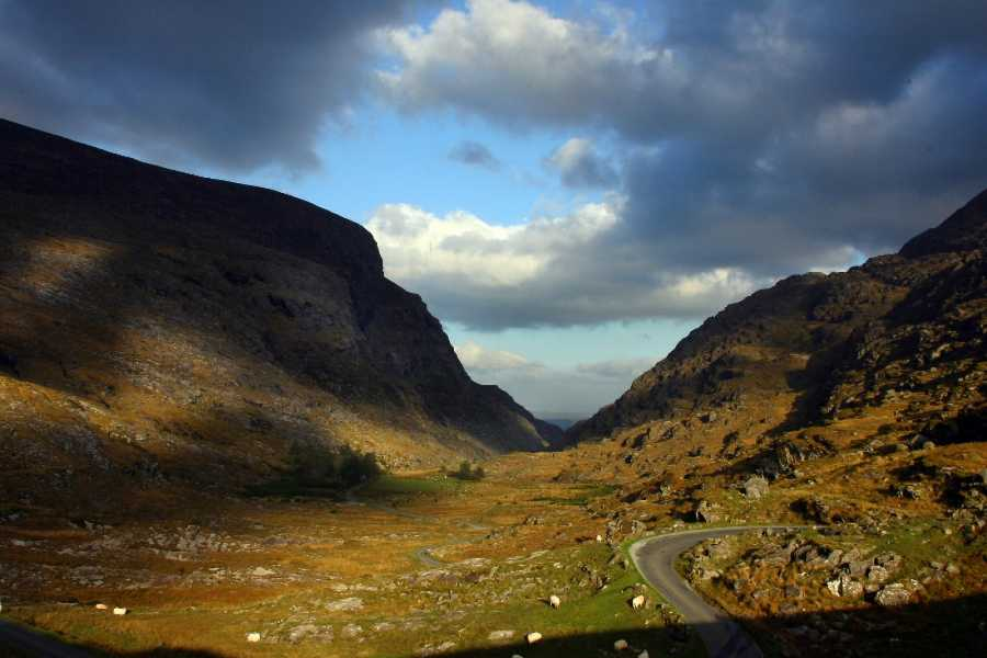 Wild N Happy Group Ltd DT Killarney - Gap of Dunloe Experience