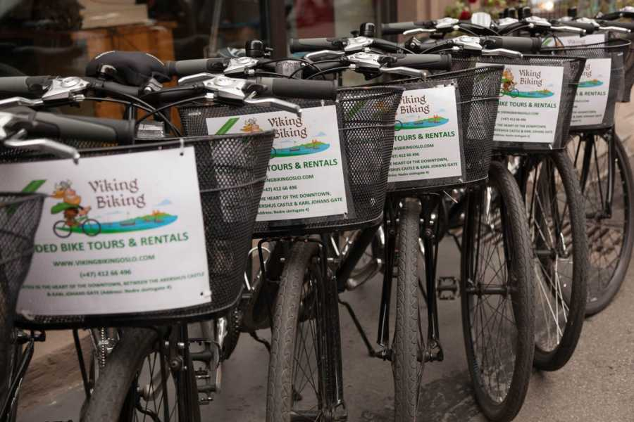 Viking Biking Bike Rental: City Bikes