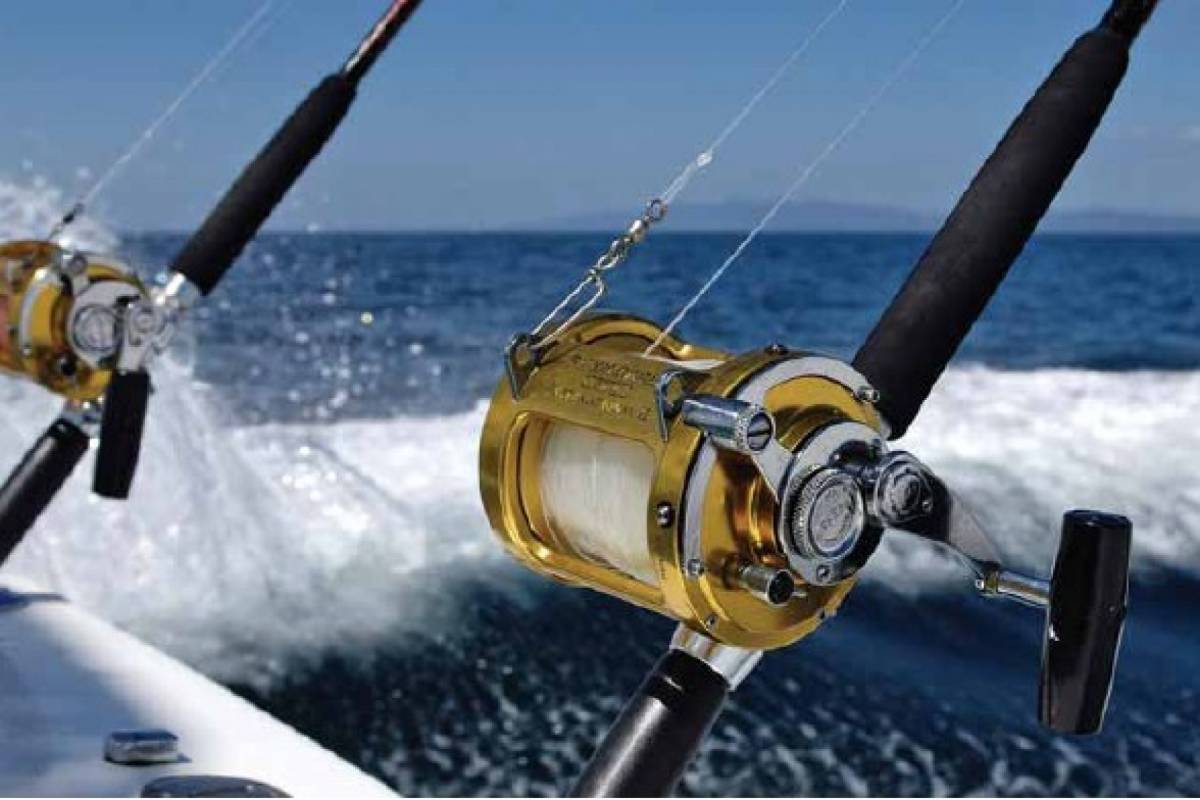 Marina Blue Haiti Fishing Charter