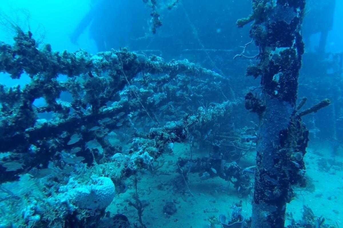 Marina Blue Haiti Excursion pour les plongeurs d'un niveau avancé