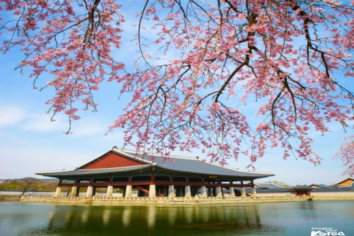 Kim's Travel 02 UNIQUE SEOUL PROGRAM (4D3N)