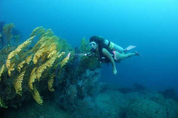 Aquanauts Grenada 5. SDI Computer Nitrox Diver