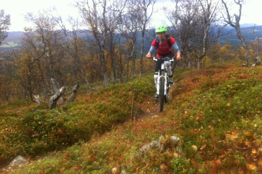 Contrast Adventure Norway Stisykling i Oppdal