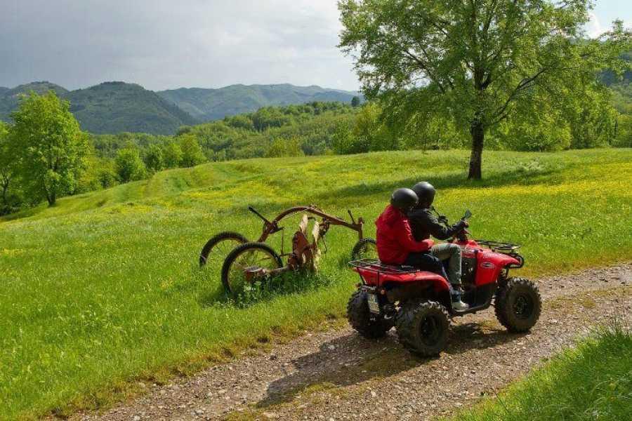 Lucca Adventure Sport Escursione Quad 'Livizzano'
