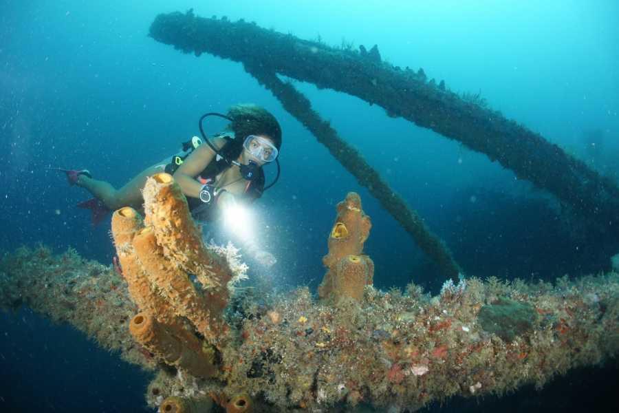 Aquanauts Grenada SOLO DIVER