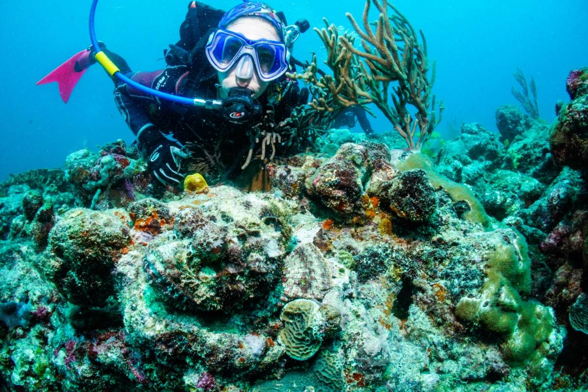 Aquanauts Grenada Private Diving Guide