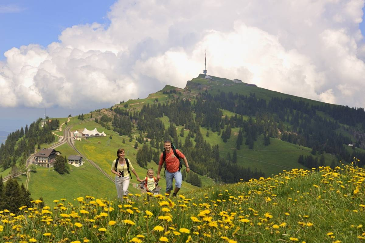 Best of Switzerland Tours Rigi – Königin der Berge
