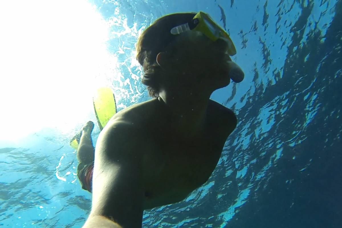 Marina Blue Haiti Snorkeling en el House Reef