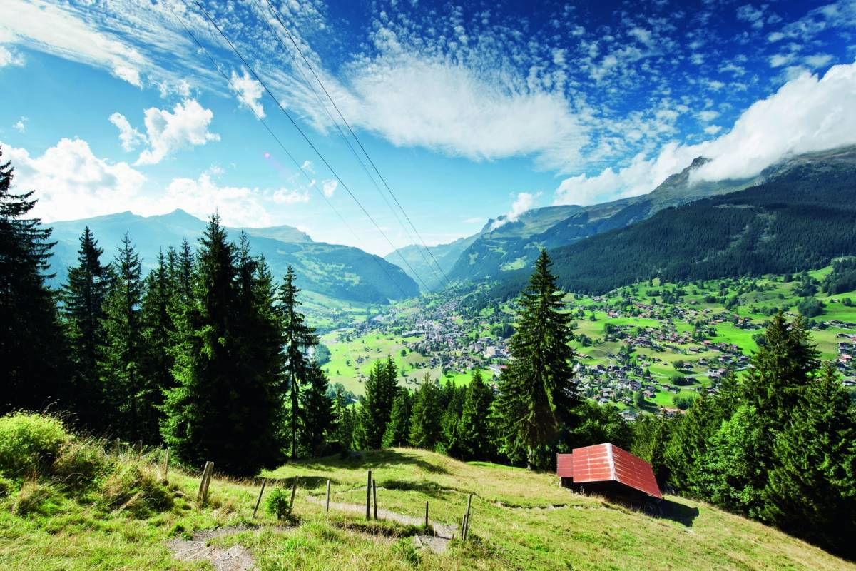 Best of Switzerland Tours Grindelwald & Interlaken ab Luzern