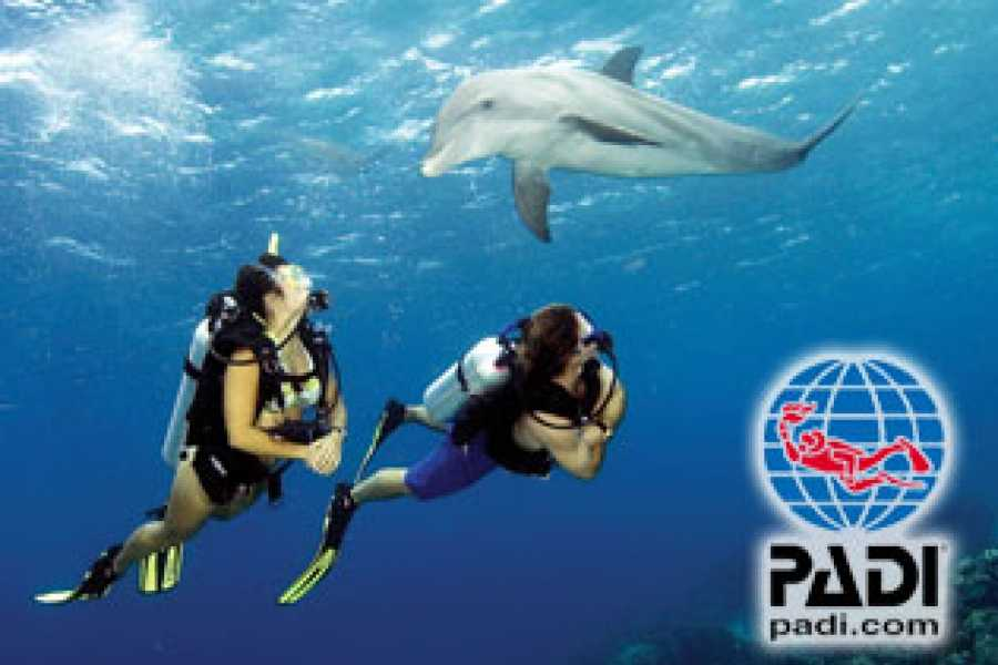 Kelly's Costa Rica PADI Certification Courses