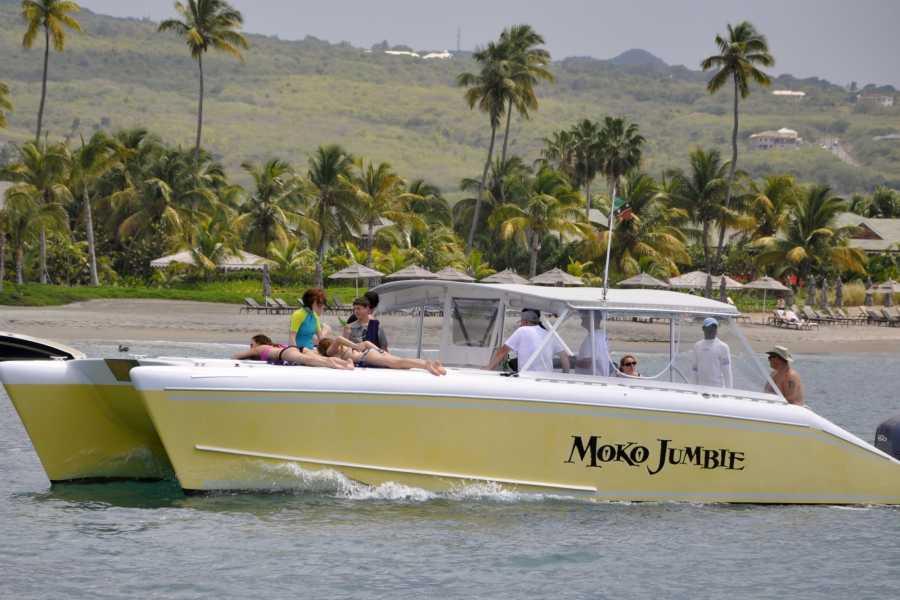Blue Water Safaris Private Power Catamaran  3.5 Hour Experience