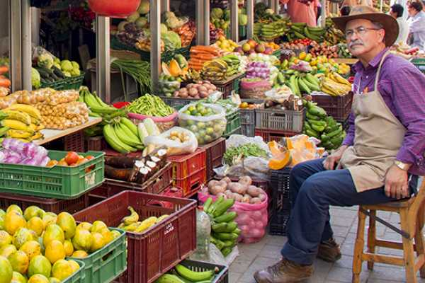 Local Fruit and Market Places Tour