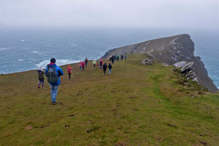 Wild N Happy Group Ltd Wild South - Travel Pass - Small Group Tour of Ireland