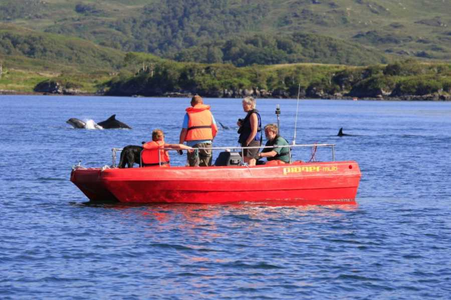 Ardnamurchan charters Full day boat hire